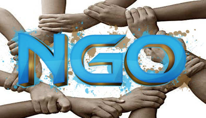 NGO: सरकार की साथी, गैर-सरकारी संस्थाएं