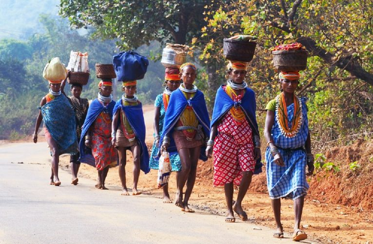 Call for Roll Back of decision to supply 'company-based' artificial Vitamin-C laced rice in adivasi district of Malkangiri